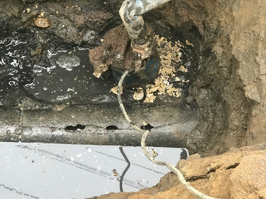 Grease Down the Sewer Line