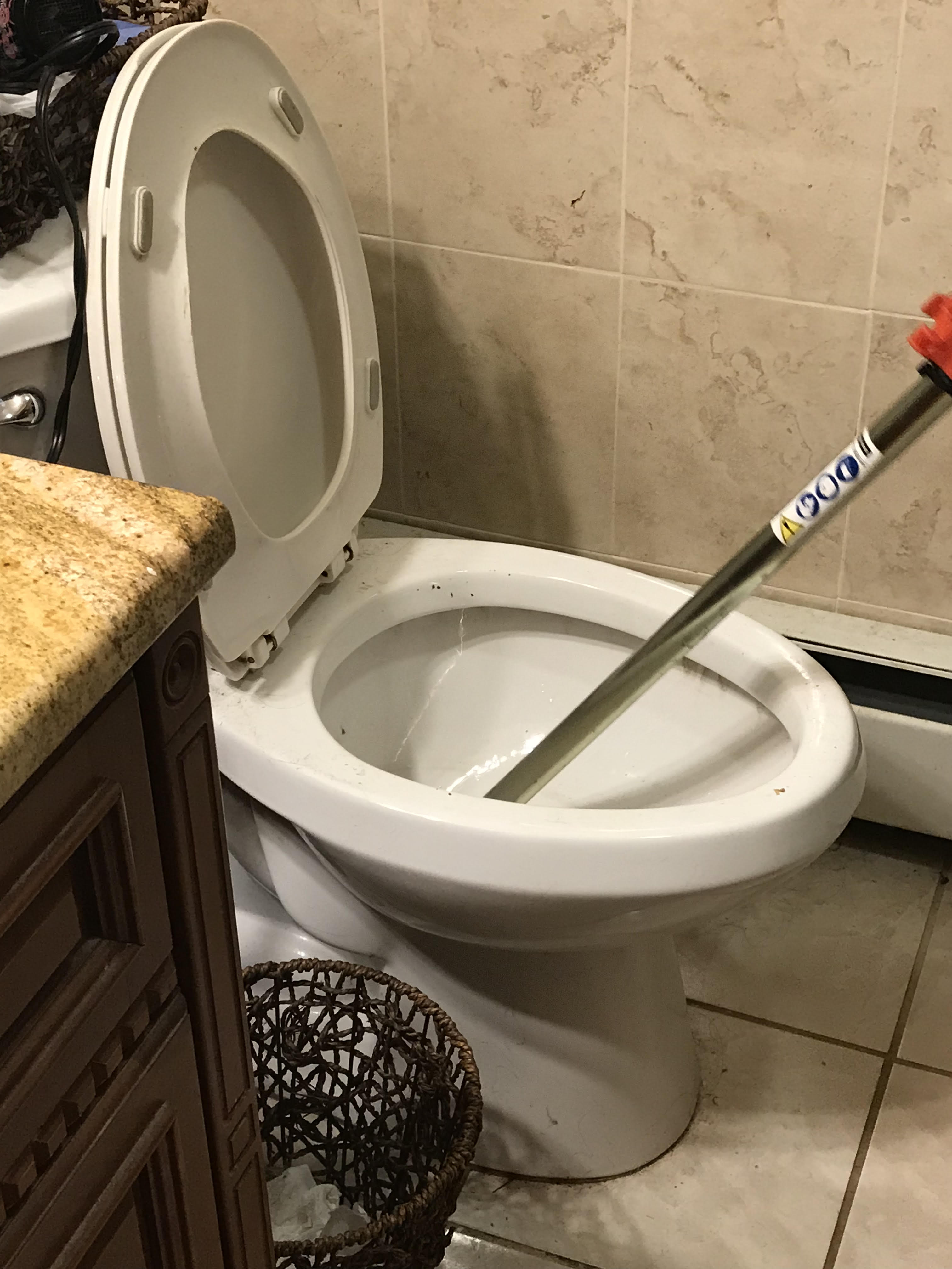 Toilet Auger Cleaning Services